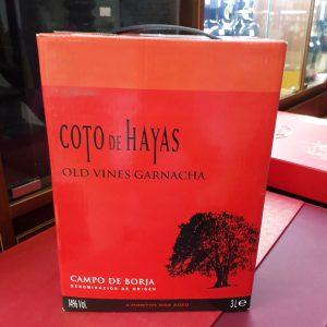 Vang TBN COTO HAYAS (Bich 3L)